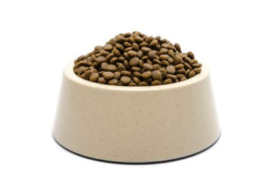 bowl of dry dog food